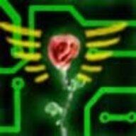 Mr_Rose