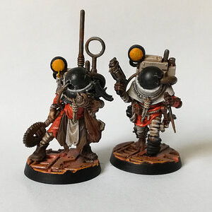 Void Cultists